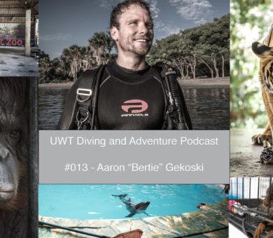 Aaron Gekoski Podcast Cover