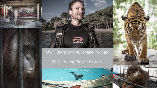 Aaron Gekoski Podcast
